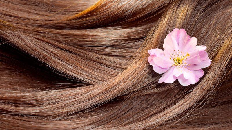 روش های نگهداری و مراقبت مو