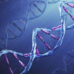 آیا چاقی من ژنتیکی است؟